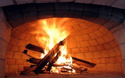 Best Fire Wood To Use for Your Pizza Oven